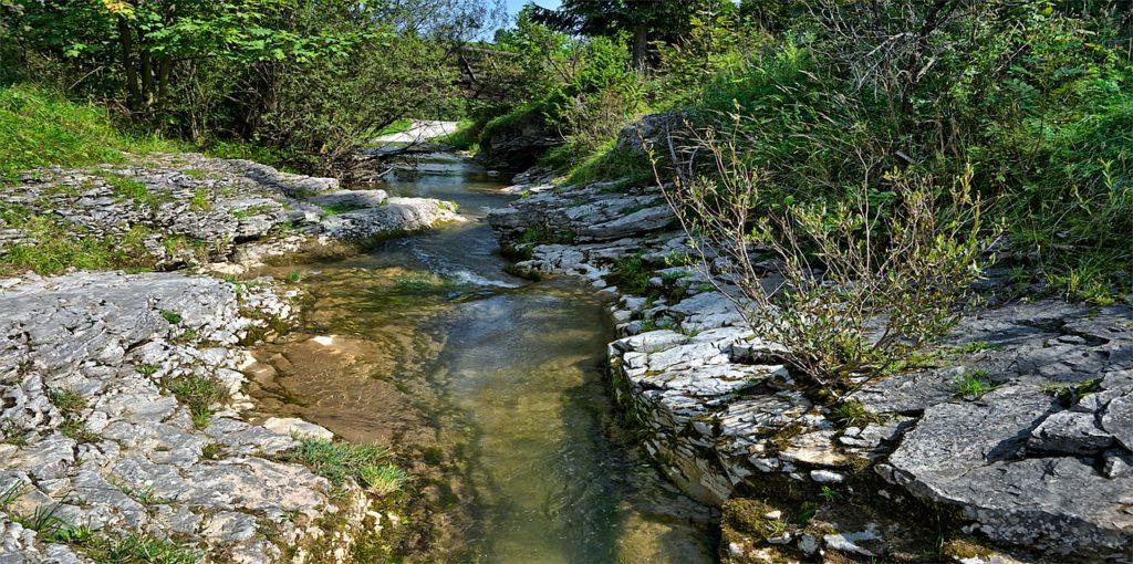 lessive pollution biodégradable
