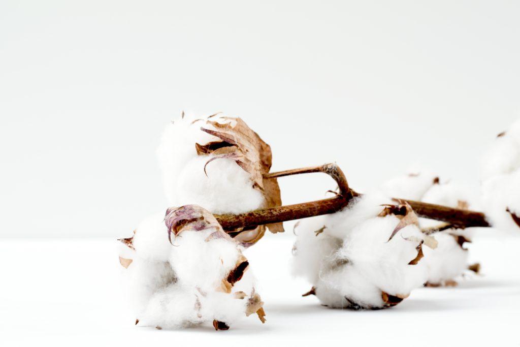 lingettes bébé en coton