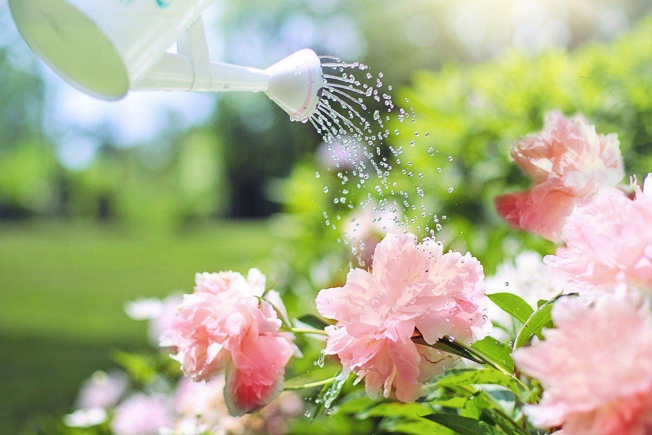 pesticides maison jardin danger